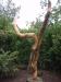 flueelboom 1.5 x 1.5 m